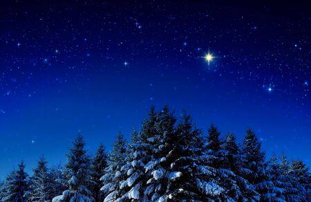 Hintergrund mit Sternen und Bäumen im Winterwald.
