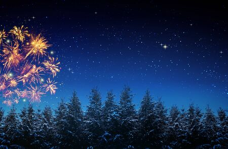 Colorful firework on night sky.New Year background. Reklamní fotografie