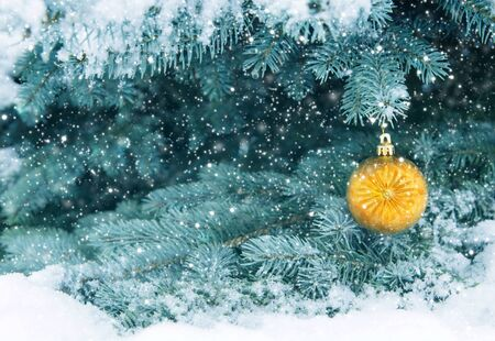 Christmas Ball hanging on a Fir Tree Branch. Christmas Background.