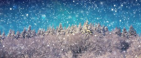Christmas background with snowy fir trees and snowfall. Stock fotó
