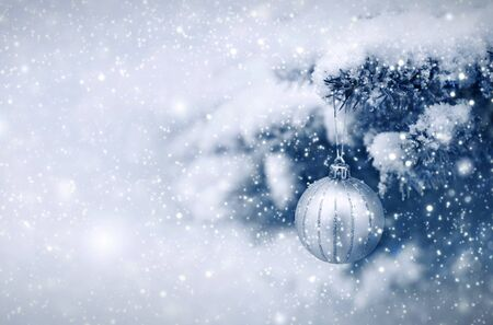 Silver Christmas Ball hanging on a Fir Tree Branch. Christmas Background.