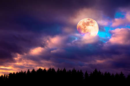 Silhouette of trees and full moon on colorful night sky.