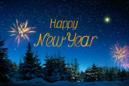 Colorful firework on night sky. New Year background.