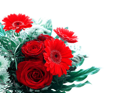 Valentines day background with gerberas and roses isolated on white .