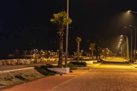 a wide view night shoot from coastal road - palm trees and city lights. photo has taken at izmir/turkey.