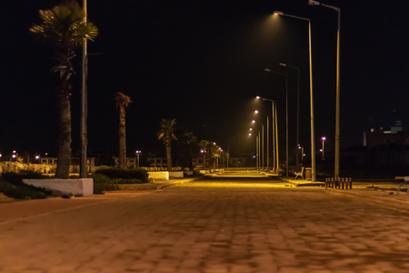 a night shoot from coastal road - palm trees and city lights. photo has taken at izmir/turkey.
