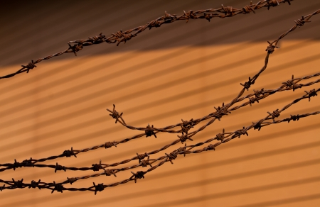 Rusty barbed writ on the brown background photo