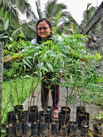 going green: Going green tree planting