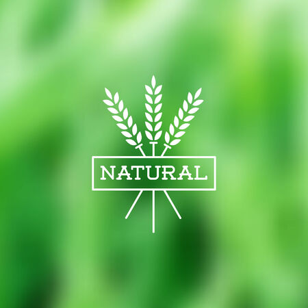 forest products: Natural vintage styled vector label on blurry background