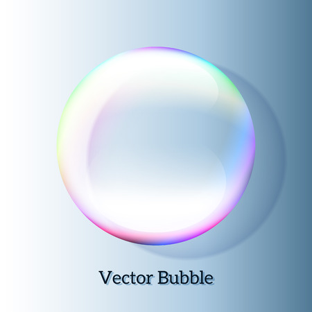Transparent soap bubble may be used as text placeholder Vector