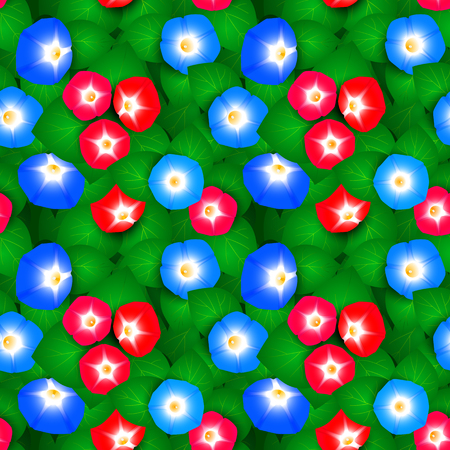 morning glory: Seamless pattern with flowers ipomoea morning glory