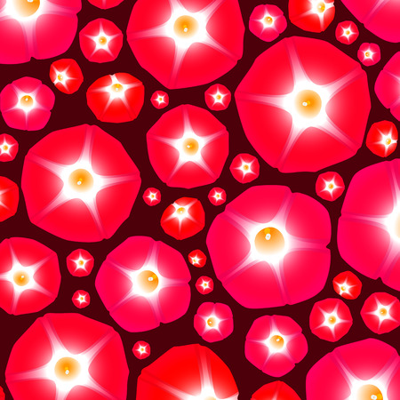 ipomoea: Summer pattern with flowers ipomoea red star