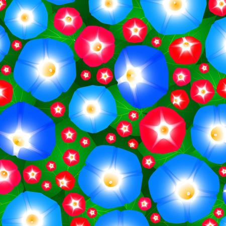 ipomoea: Summer pattern with flowers ipomoea morning glory