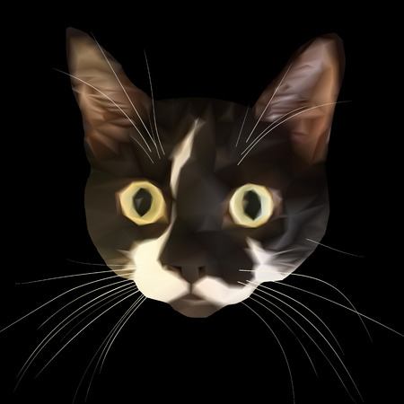 low poly: Staring cat head with big eyes and triangular grid