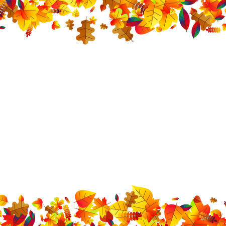 fall leaves border: Autumn leaves scattered background with oak, maple and rowan