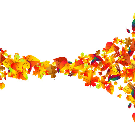 Autumn leaves scattered background with oak, maple and rowan Vector Illustration