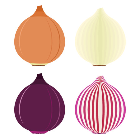 golden symbols: Onion symbols or flat icons with red and golden, sliced and whole vegetables