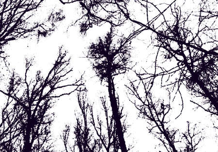 Tree tops in the sky with dotwork style. Creepy naked tree branches in winter with dotted texture.