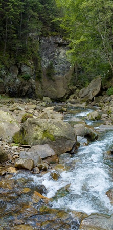 Vertical oriented panorama of mountain river photo