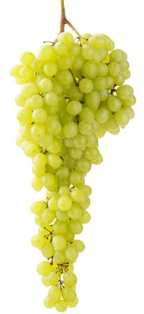 sultana: bunch of green sultana grape isolated over white
