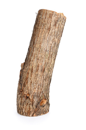 chock: one willow log isolated over white background