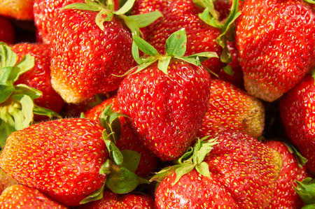 Closeup of fresh and juicy strawberries as background