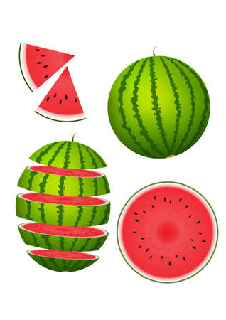 Vector illustration of watermelon slice set