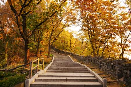 cielo: Escaleras que van cuesta arriba en otoño Foto de archivo