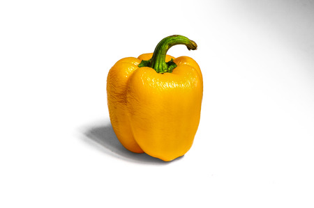 dehydration: A shot of a fresh yellow bell pepper on white background for Dehydration Project Day 7. The surface of the pepper has shown some loss in water and more wrinkles were observed.