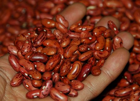 merah: The Red Kidney beans Stock Photo