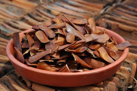 caoba: Semillas de caoba