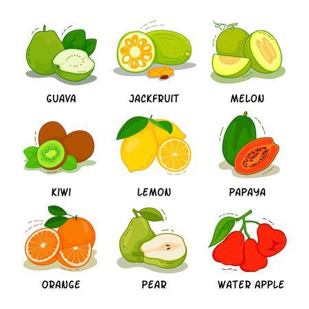 Fruit, Fruits Collection Illustration