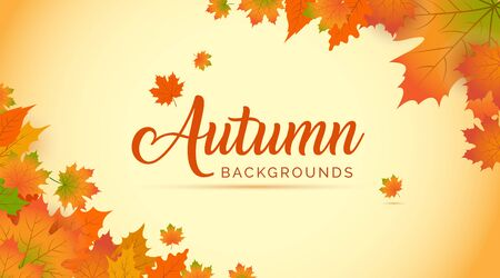 Autumn Background, Autumn leaves Background, Autumn Banner Backgrounds Banque d'images - 138455663
