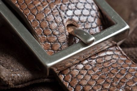 buckle: leather belt with buckle in closeup Stock Photo