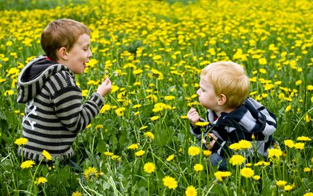 two cute boys blowing dandelions photo