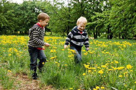 タンポポの草原で実行されている 2 つの笑みを浮かべて男の子