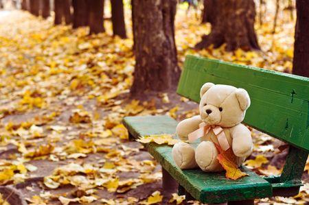 秋の公園でベンチに座っているテディー ・ ベア 写真素材