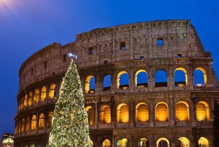 rome italy: Christmas tree at Coliseum in the night, Rome, Italy