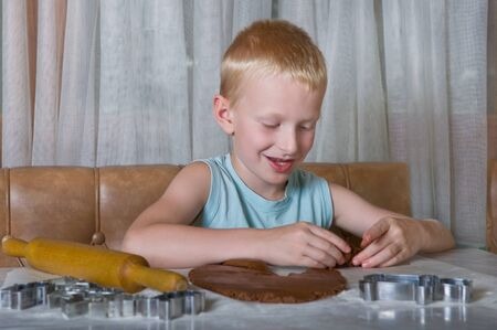 young boy baking gingerbread cookies photo