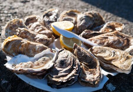 Dozen oysters with lemon on white plate  Beachfront of Cancale, France  photo