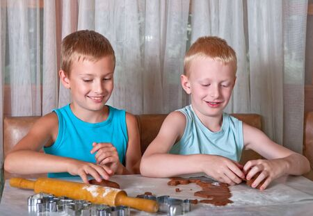 two boys making gingerbread cookies photo