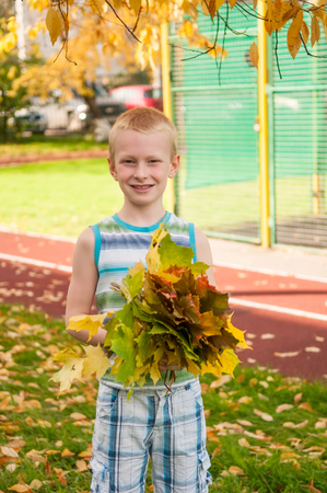 Adorable boy smiling and holding autumn leaves on school yard photo