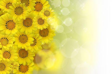 通信: 黄色のバック グラウンド花 - してください見て私のポートフォリオで他の種類が存在します。