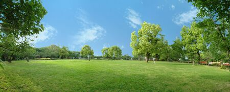 Panorama scenery of park of CG synthesis 版權商用圖片