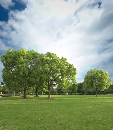 synthesis: Scenery of park of CG synthesis