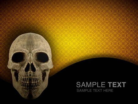 synthesis: CG synthesis background image of skeleton