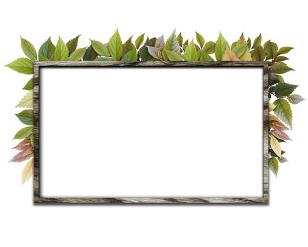 CG synthesis bulletin board of eco-image Stock Photo - 8162661