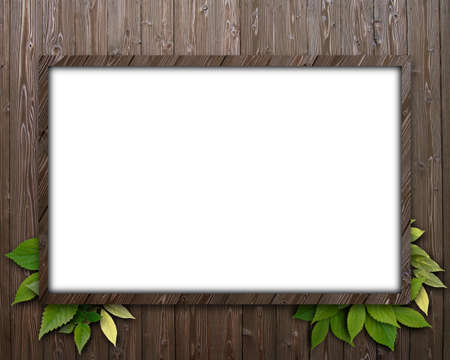 CG background of leaf and frame Stock Photo - 8638682