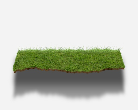 synthesis: CG synthesis of shelf of lawn