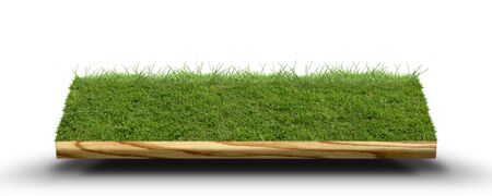 3D image of lawn photo